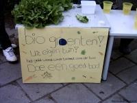 biologische groente permacultuurtuin