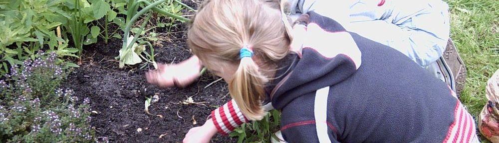 Permacultuur-leertuinen
