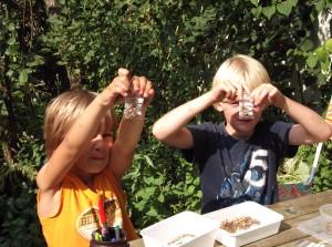 kinderen in permacultuurleertuin